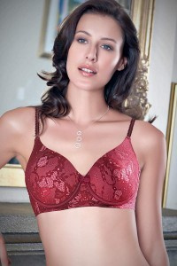Enamor Padded All Over Lace Bra