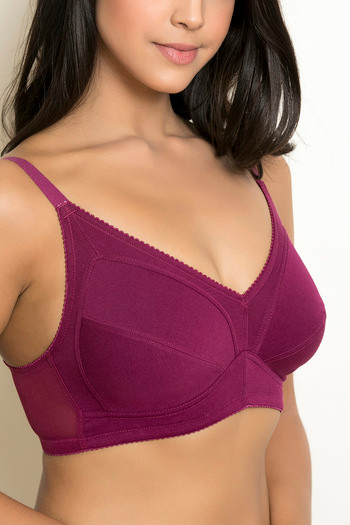 12b57e23c7687 Buy Rosaline Full Figure Double Layered Super Support Bra - Purple at  Rs.695 online